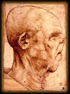 Grotesque head, by Leonardo da Vinci