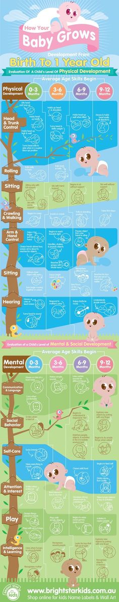 How your baby grows and develops chart from Bright Star Kids