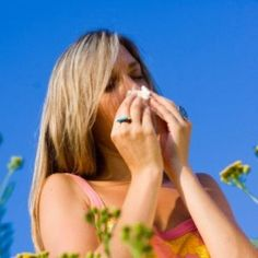 """Seasonal allergies are much more than a nuisance.  They are one of the mildest forms of autoimmune disease and a gentle warning by the body that more autoimmunity problems are on the way if the gut imbalance that is causing them is not dealt with effectively.  Hippocrates noted that """"all disease begins in the gut.""""    This includes seasonal allergies like hay fever. http://www.thehealthyhomeeconomist.com/pollen-is-not-the-problem/"""