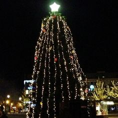 Instagram photo by @anomedie via ink361.com Trondheim, Christmas Tree, Holiday Decor, Instagram, Home Decor, Teal Christmas Tree, Decoration Home, Room Decor, Xmas Trees