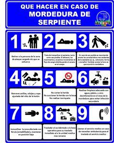 Riegos biológicos (Mordedura de Serpientes) en el ámbito forestal y agrícola, protocolo de que hacer en caso de.
