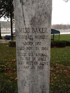28 Headstones That Defied Expectations Miss Baker, Tombstone Epitaphs, Broken Soul, Famous Graves, Have Time, Squirrel, Grave Markers, Huntsville Alabama, Space Race