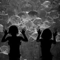 Underwater Sisters by Thomas Hawk