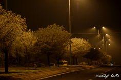 Night Light Series 3 by Mustafa Balta