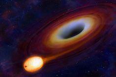 Black Holes Feed On Stars...
