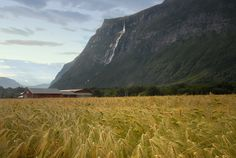 https://flic.kr/p/a9P147   Harvest time   Norway is sometime so brutally beautiful