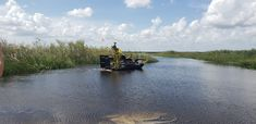 The 1 hour semi-private Airboat Adventure covers approximately 8 miles of the Florida everglades. This Adventure is shared with up to 11 other guests. The semi private airboat ride is only Available at 8:00 am - 10:00 am - 12:00 pm and 2:00 pm. Note: Reservations are recommended for any adventure, if you show up without booking in advance we cannot guarantee availability. Everglades Miami, Everglades Airboat, Airboat Rides, Habitats, Scenery, Tours, America, Explore, Adventure