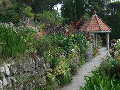 Tresco Abbey Gardens, Cornwall, UK