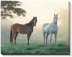 F925520481: Morning Mist Horses Wrapped Canvas by Persis Clayton Weirs