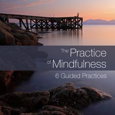 """The Practice of #Mindfulness:  6 Guided Practices 