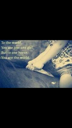 I'm sure all horses feels this way :) Miss my horse Equine Quotes, Equestrian Quotes, Rodeo Quotes, Equestrian Problems, My Horse, Horse Love, Horse Tips, Cute Horses, Beautiful Horses