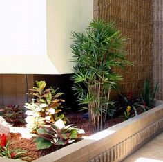 Commercial Atrium Planter. Artificial tropical foliage, featuring kentia palms and colorful crotons, brighten and soften the lobby of this commercial office building.
