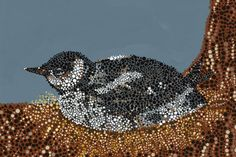 """Marbled Murrelet - Acrylic dot painting from """"Through Endangered Eyes."""" Created by Rachel Dillon, 2005"""