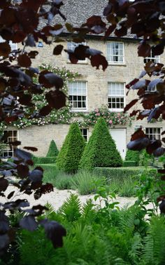 Arne Maynard Garden Design- boxwood and fagus framing