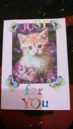 Cute kitten card