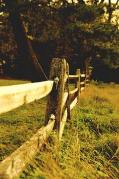 Love the old fencing for around the house or garden. {SF}