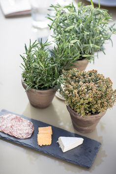 A cheeseboard is always a good idea Diy Supplies, Outdoor Entertaining, Garden Projects, Outdoor Living, Summer, Outdoor Life, Summer Time, The Great Outdoors, Outdoors