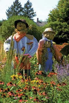 images of garden scarecrows | Perhaps your scarecrow would appreciate some company.