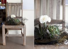 Acclaimed USA wedding photographer Julie Lim perfectly captured KAMERS 2010 when she visited South Africa for a friend's wedding Visit South Africa, Love Chair, Better Love, Friend Wedding, In This Moment, Creative, Plants, Scrabble, Diy