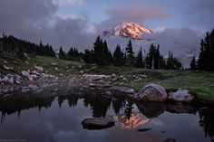 Photograhy of Tyler Westcott Wish You Here, Day Trips From Seattle, Spray Park, Seattle Photographers, Ideal Image, Mount Rainier National Park, Bouldering, The Great Outdoors, Places Ive Been