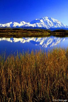 Mount McKinley, or Denali, in Alaska, USA, is the highest mountain peak in North America at a height of approximately 20,320 feet (6,194 meters). It is the centerpiece of Denali National Park.