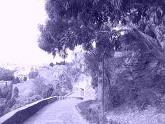 Alcazaba, Coracha y Jardines de Puerta Oscura. Málaga.