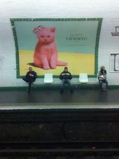 Pink Cat in Paris