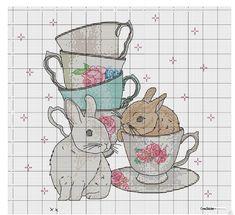 mutfağımdaki tavşanlar