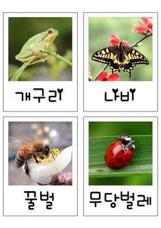 3번째 이미지 Diy And Crafts, Crafts For Kids, Learn Korean, Spring Flowers, Planting Flowers, Kindergarten, Classroom, Fish, Education