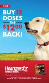 HEARTGARD PLUS helps prevent canine heartworm disease, and treats and controls roundworms and hookworms, too.