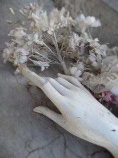 elegant hand and flowers