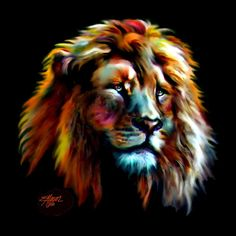 #lion