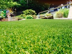 Select VR offers remarkable realism. This premium synthetic grass product features a bright green face yarn with a tan thatch. This rich color scheme, combined with the tall dense construction of Select VR, gives the product an incredibly realistic appearance and feel. The taller construction performs best in moderate traffic landscape areas, and is not designed for use in very high traffic areas.