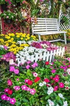 Do you have small garden space? Looking to create the best summer garden but don't know how? Today, we will share you some summer small garden ideas below. Be sure to check it to help you make a show stopping garden for your own. Small Flower Gardens, Small Flowers, Beautiful Flowers, Beautiful Scenery, Summer Flowers, Beautiful Homes, Backyard Trees, Backyard Landscaping, Landscaping Ideas