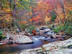 Hawn State Park | Hawn State Park, a Missouri State Park located nearby Bonne Terre ...