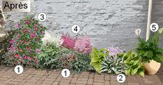 Horticulture, Green, Plants, Garden, Outdoor, Vegetable Garden, Planters, Flowers, Nature