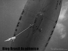 Filme de 1934 mostra dirigível pescando tubarão