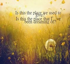 i love keane! Cool Lyrics, Music Lyrics, Music Is My Escape, Music Is Life, Keane Lyrics, Where Have You Gone, We Heart It, Somewhere Only We Know, Quotes About Everything