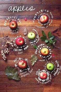 6 benefits of eating apples / 6 avantages de manger des pommes Web Design, Food Design, Graphic Design, Layout Design, Branding, Apple Recipes, Healthy Recipes, Healthy Food, Dessert Healthy