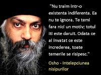 O poveste de Osho Osho, Salvia, Einstein, Mindfulness, Spirit, Movie Posters, Sage, Film Poster, Consciousness