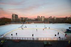 mccarren rink, first ice skating rink in north brooklyn