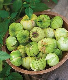 Going to try my hand at tomatillos this year. Hot diggity damn, but I'm looking forward to some tomatillo chutney next fall.