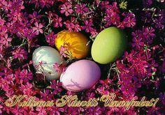 Áldott húsvéti ünnepeket kívánunk minden kedves látogatónknak!   az ADDICTUS MŰHELY munkatársai Easter, Minden, Places, Quotes, Quotations, Easter Activities, Quote, Shut Up Quotes, Lugares