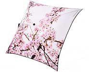 Parapluie cerisier du japon