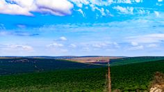 Peace The Addo Elephant National Park is a diverse wildlife conservation park situated close to Port Elizabeth in South Africa