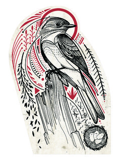 David Hale best bird