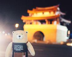 落一落新竹#manualfactory #manualfactorybear #logonhk #hk #hongkong #bear #discoverhongkong #mfbear #taipei #taiwan #hsinchu