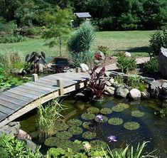 Looking to add some personality to an underwhelming backyard? Maybe it's time to add a water feature. Installing an outdoor pond or water hole can be a simple weekend project using a kit from your local nursery or building supply store, or it can be an elaborate landscaping job that requires professional services. Before beginning, think carefully about the purpose of your outdoor pond. A small water hole edged with a narrow perennial garden adds tranquility to a small garden area, whereas a
