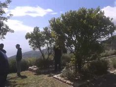 """""""Learning week"""" sull'apicoltura all'Orto dei Semplici di Rio nell'Elba"""