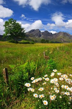 Blaven and Hay Meadows, Isle of Skye,Scotland.